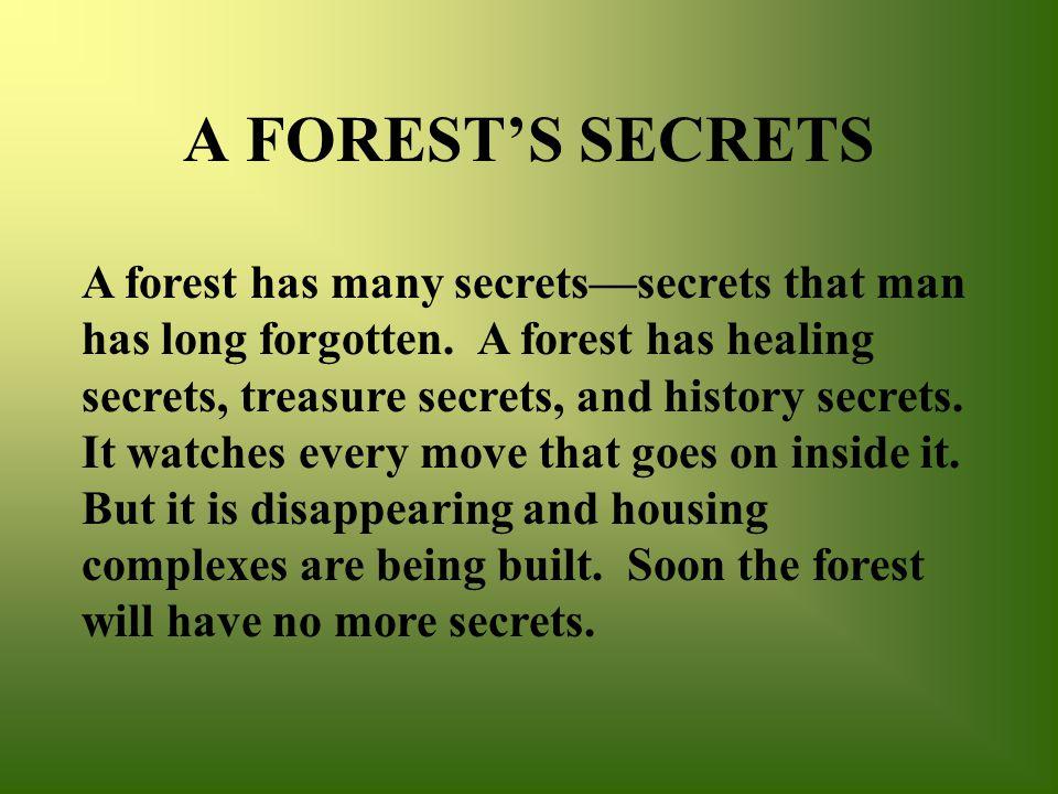 A FOREST'S SECRETS A forest has many secrets—secrets that man has long forgotten.