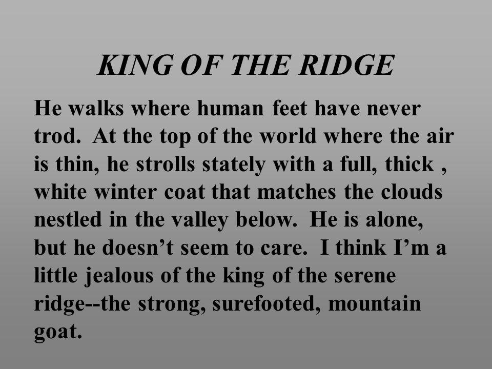 KING OF THE RIDGE He walks where human feet have never trod.