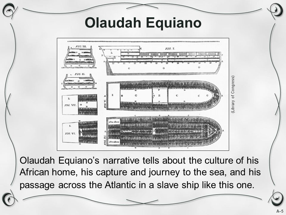 A–5 Olaudah Equiano Olaudah Equiano's narrative tells about the culture of his African home, his capture and journey to the sea, and his passage across the Atlantic in a slave ship like this one.