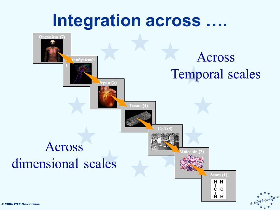 © 2006 STEP Consortium Integration across …. Across Disciplines Medicine BioEngineering Biology