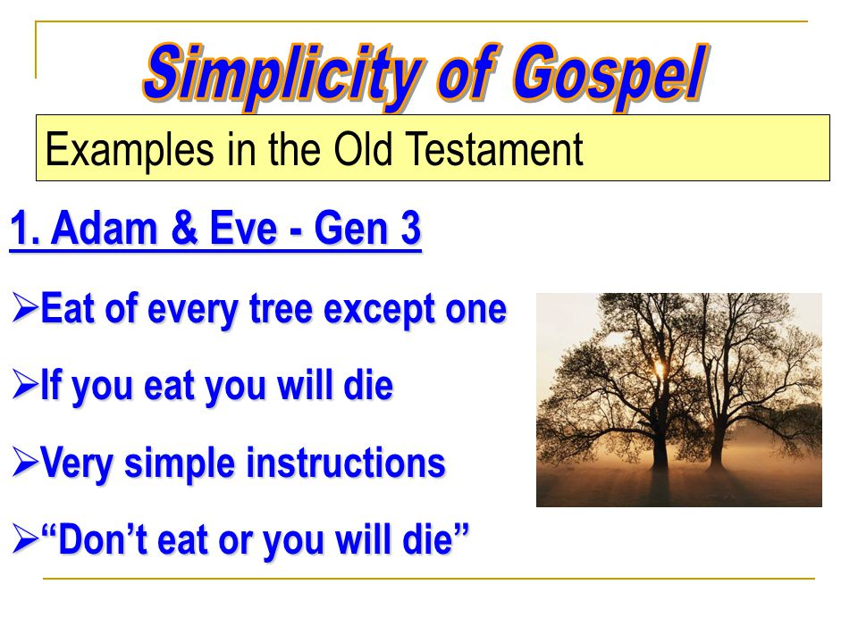 Examples in the Old Testament 1.