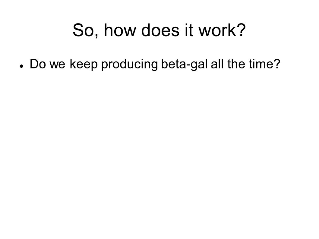 So, how does it work? Do we keep producing beta-gal all the time?