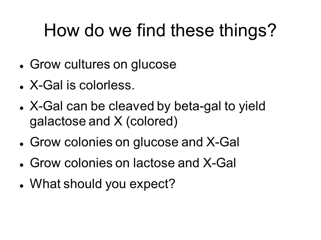 How do we find these things. Grow cultures on glucose X-Gal is colorless.
