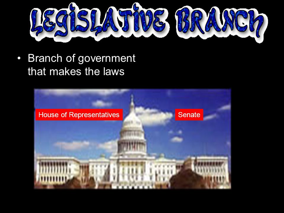 Branch of government that is the court system