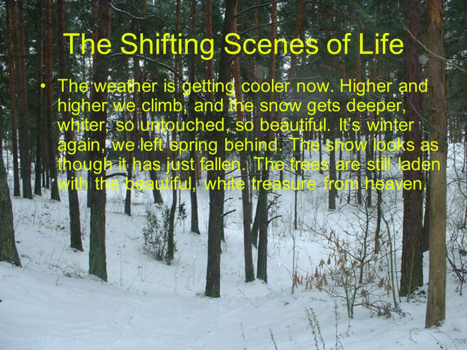 The weather is getting cooler now. Higher and higher we climb, and the snow gets deeper, whiter, so untouched, so beautiful. It's winter again, we lef