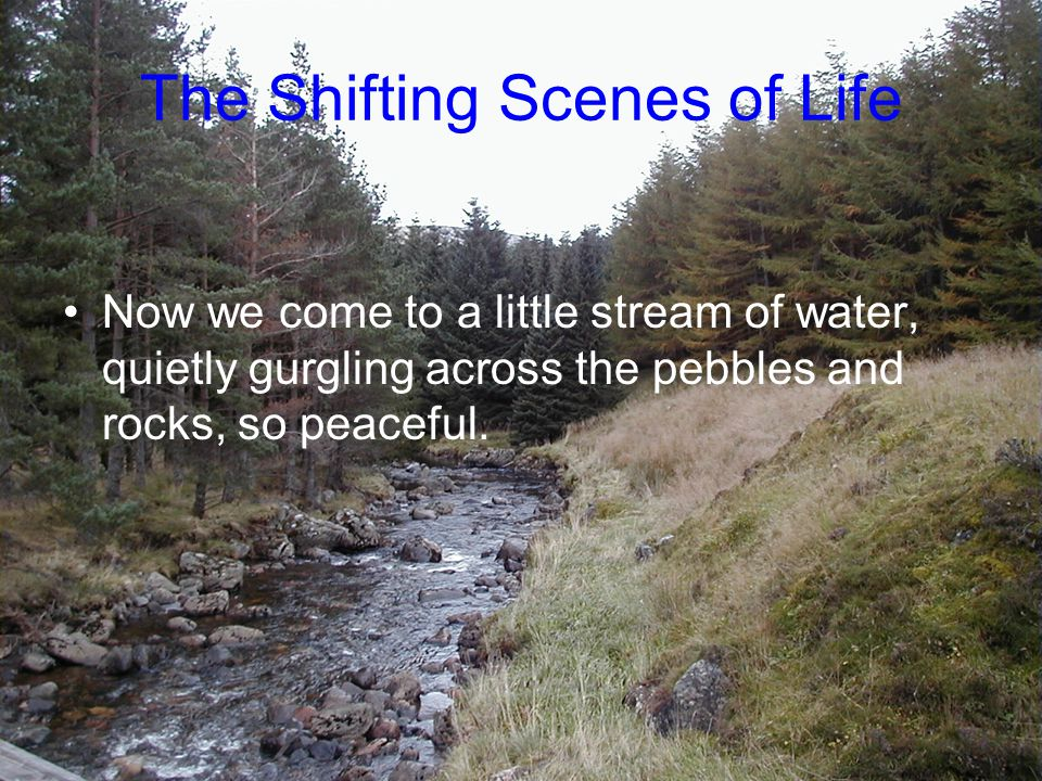 Now we come to a little stream of water, quietly gurgling across the pebbles and rocks, so peaceful. The Shifting Scenes of Life