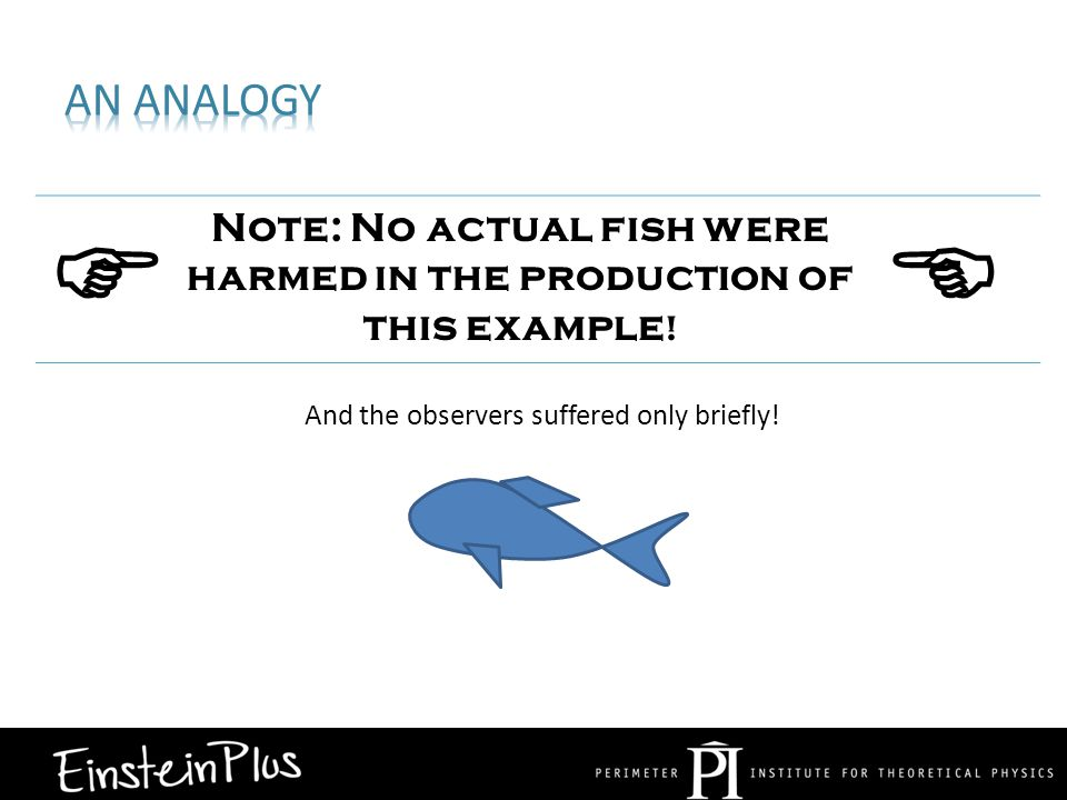  Note: No actual fish were harmed in the production of this example !  And the observers suffered only briefly!