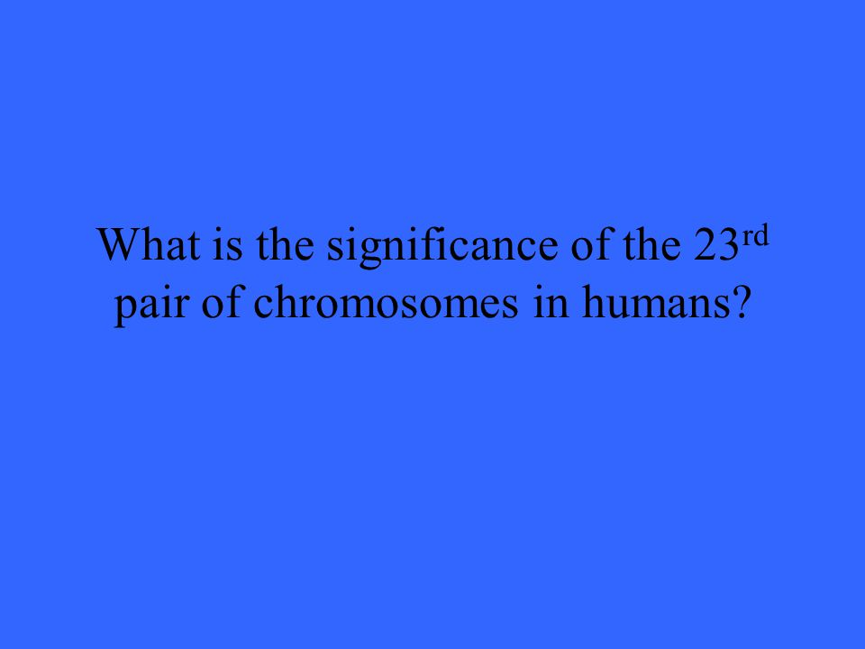 What is the significance of the 23 rd pair of chromosomes in humans?