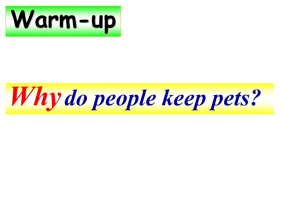 Why do people keep pets Warm-up