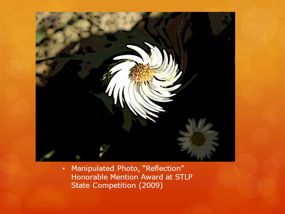 Manipulated Photo, Reflection Honorable Mention Award at STLP State Competition (2009)