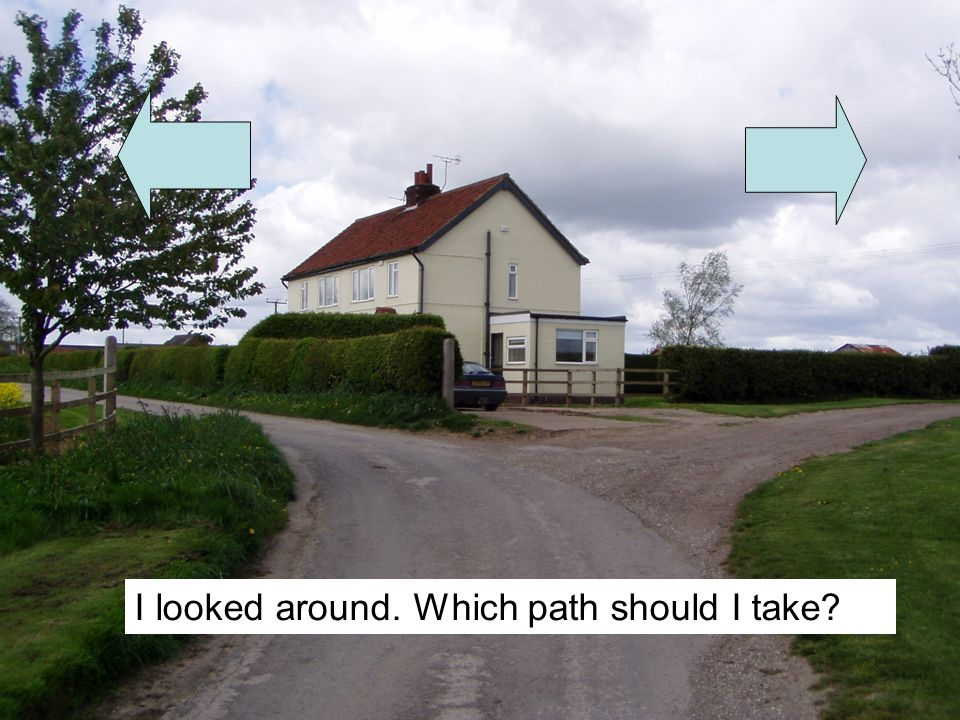 I looked around. Which path should I take?
