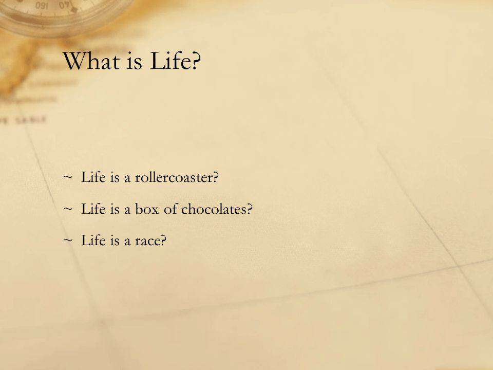What is Life? ~Life is a rollercoaster? ~Life is a box of chocolates? ~Life is a race?