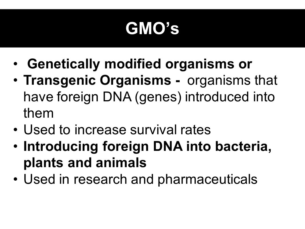 Genetically modified organisms or Transgenic Organisms - organisms that have foreign DNA (genes) introduced into them Used to increase survival rates Introducing foreign DNA into bacteria, plants and animals Used in research and pharmaceuticals GMO's
