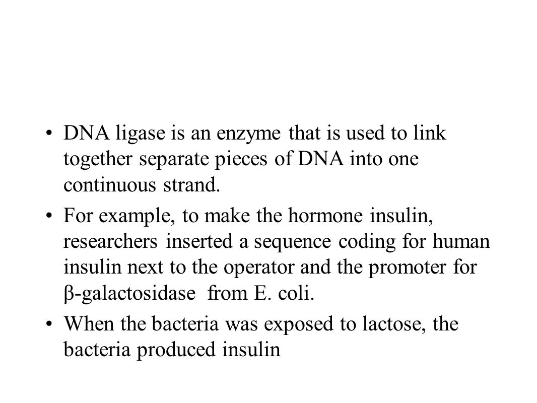 Rat Insulin Gene Example