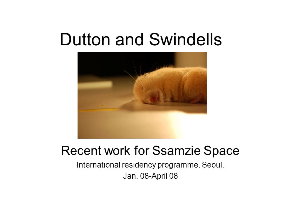 Dutton and Swindells Recent work for Ssamzie Space International residency programme.
