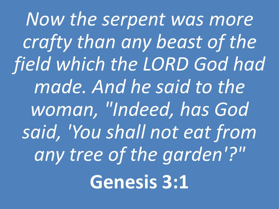 Now the serpent was more crafty than any beast of the field which the LORD God had made. And he said to the woman,