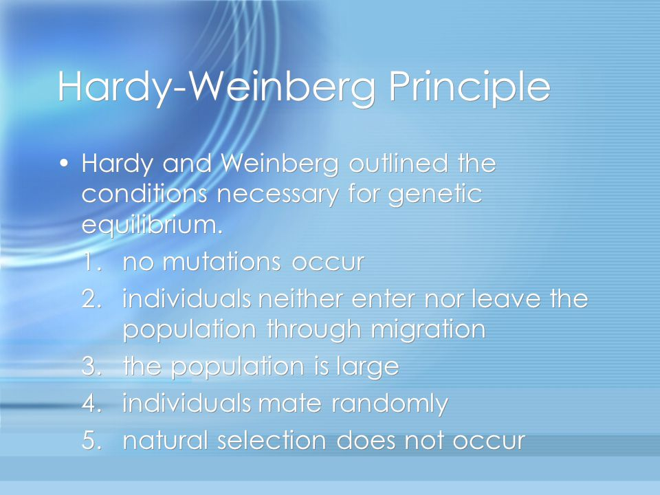 Hardy-Weinberg Principle Hardy and Weinberg outlined the conditions necessary for genetic equilibrium.