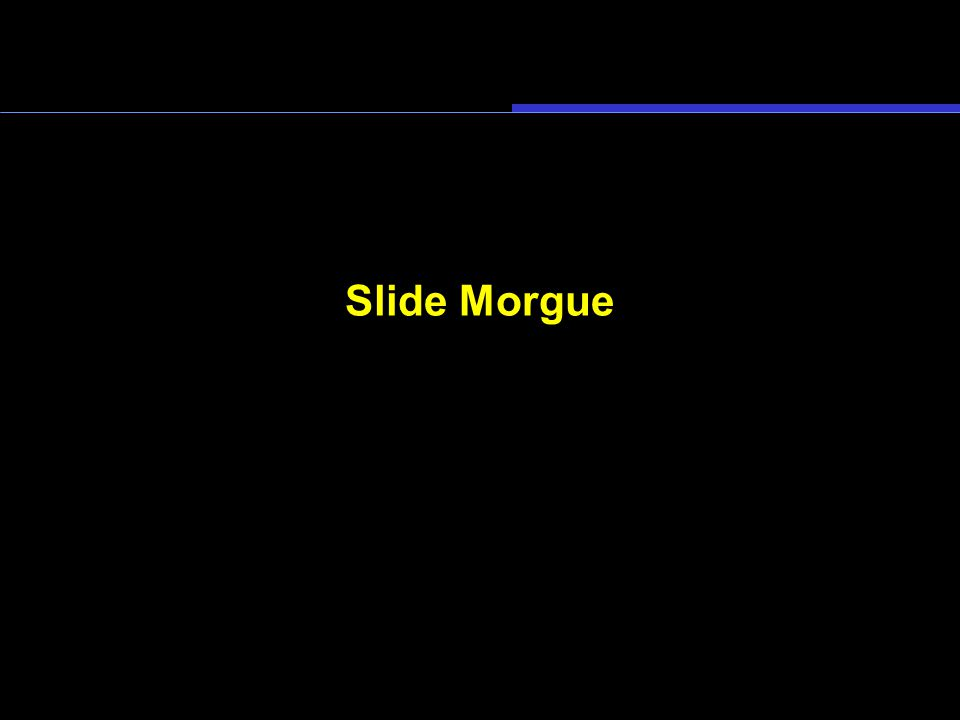Slide Morgue