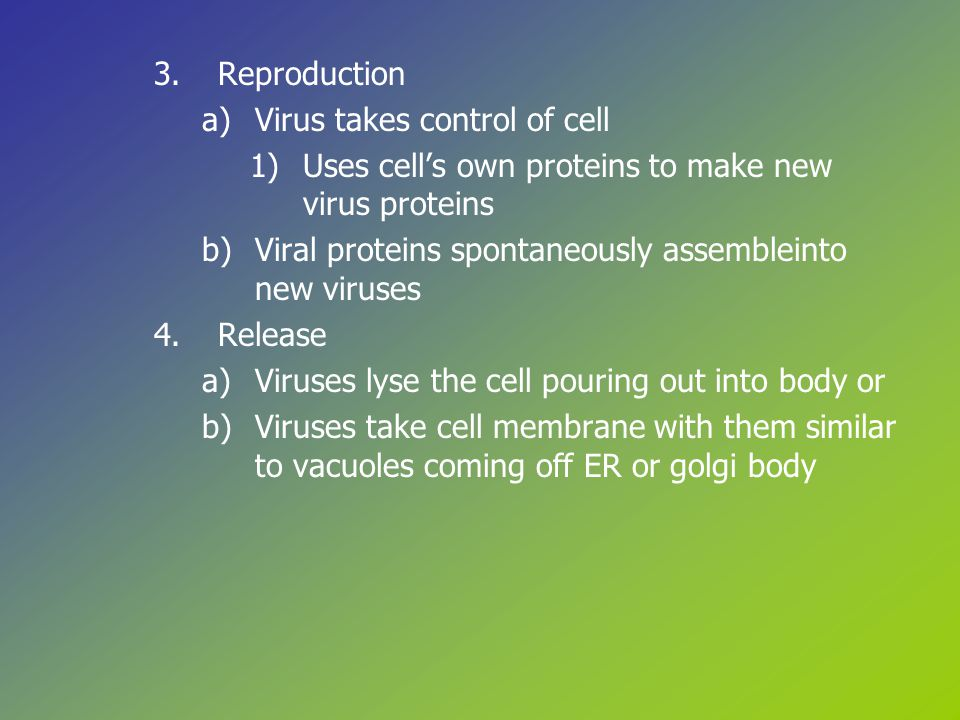 3.Reproduction a)Virus takes control of cell 1)Uses cell's own proteins to make new virus proteins b)Viral proteins spontaneously assembleinto new viruses 4.Release a)Viruses lyse the cell pouring out into body or b)Viruses take cell membrane with them similar to vacuoles coming off ER or golgi body