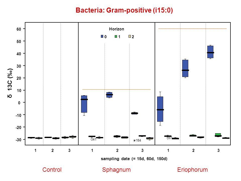 Bacteria: Gram-positive (i15:0) ControlSphagnumEriophorum -30 -20 -10 0 10 20 30 40 50 60 δ 13C (‰) 123123 sampling date (= 15d, 60d, 150d) 41 184 123 81 Horizon 012