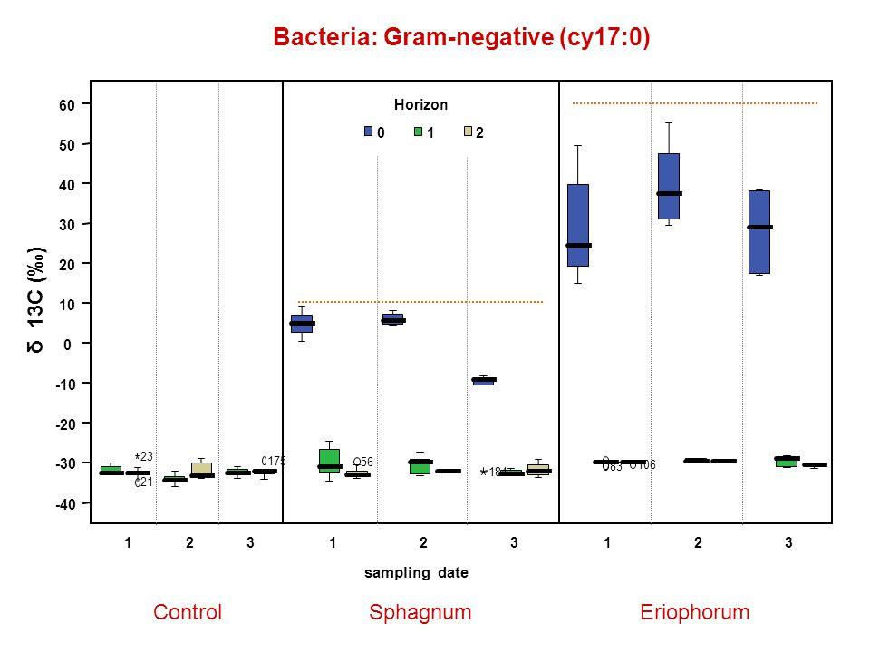 Bacteria: Gram-negative (cy17:0) ControlSphagnumEriophorum δ 13C (‰) 123123 sampling date 123 Horizon 012 83 106 56 184 21 175 23 -40 -30 -20 -10 0 10 20 30 40 50 60