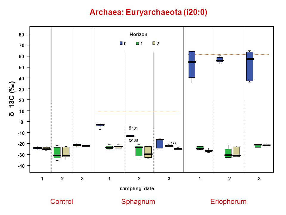 Archaea: Euryarchaeota (i20:0) ControlSphagnumEriophorum δ 13C (‰) 123123 sampling date 123 Horizon 012 108 101 186 -40 -30 -20 -10 0 10 20 30 40 50 60 70 80