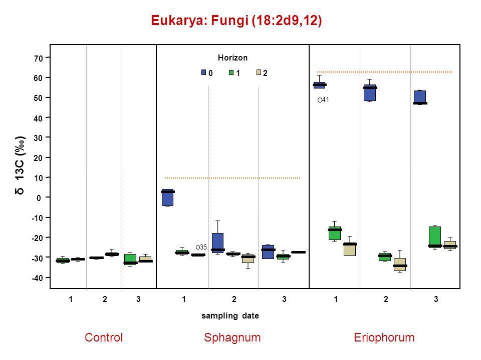 Eukarya: Fungi (18:2d9,12) ControlSphagnumEriophorum δ 13C (‰) 123123 sampling date 123 Horizon 012 -40 -30 -20 -10 0 10 20 30 40 50 60 70 41 35