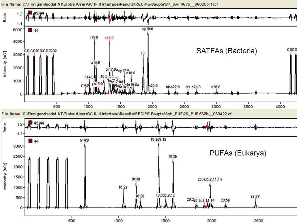 SATFAs (Bacteria) PUFAs (Eukarya)