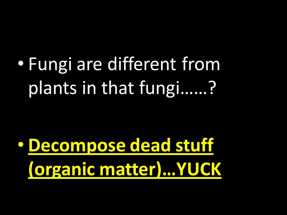 Decompose dead stuff (organic matter)…YUCK