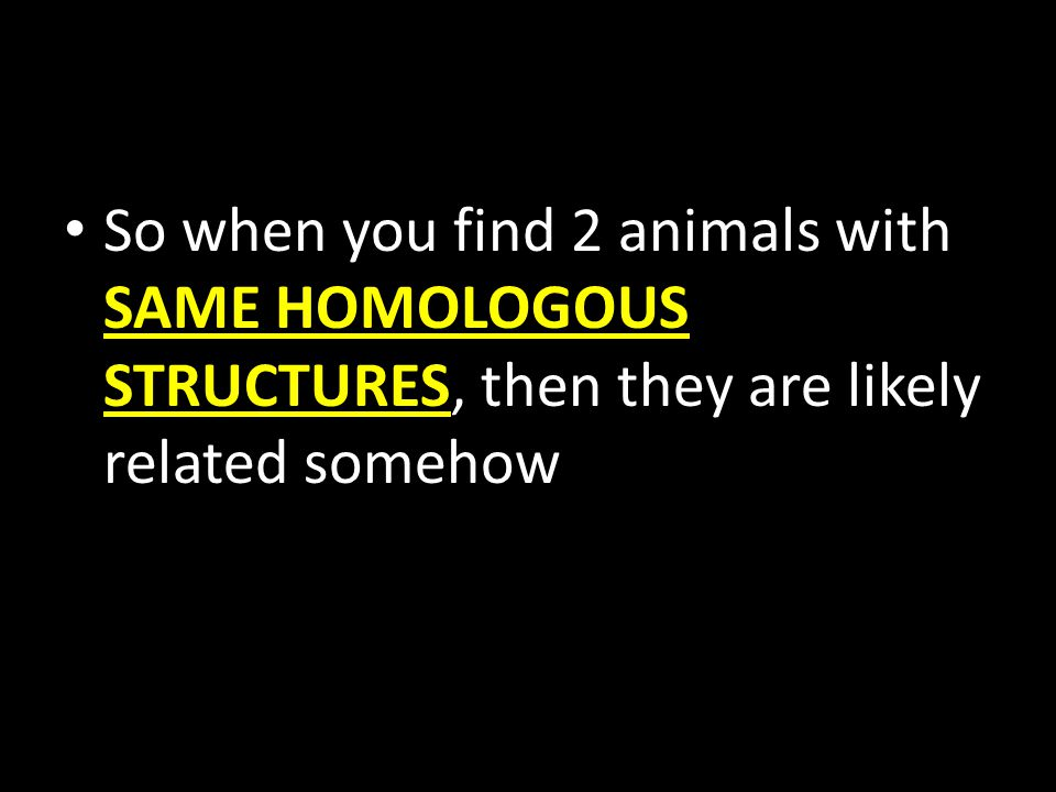So when you find 2 animals with SAME HOMOLOGOUS STRUCTURES, then they are likely related somehow