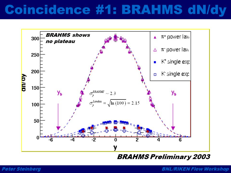 Peter SteinbergBNL/RIKEN Flow Workshop Coincidence #1: BRAHMS dN/dy BRAHMS Preliminary 2003 BRAHMS shows no plateau