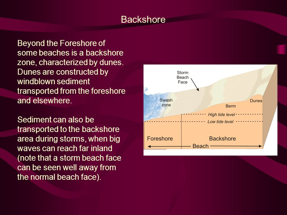 A Short Note on Reefs Another prominent feature of shallow marine settings is the reef.
