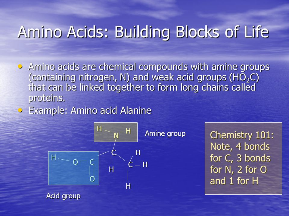 Amino Acids: Building Blocks of Life Amino acids are chemical compounds with amine groups (containing nitrogen, N) and weak acid groups (HO 2 C) that can be linked together to form long chains called proteins.