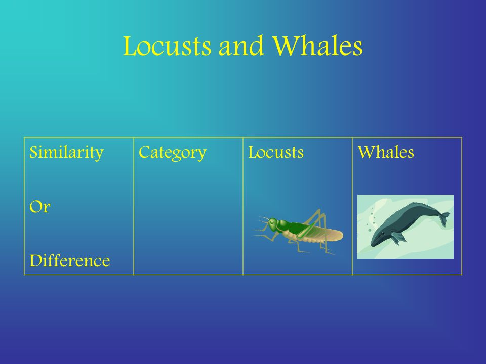 Locusts and Whales Similarity Or Difference CategoryLocustsWhales