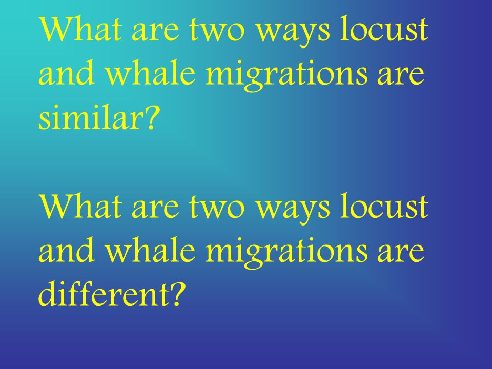 What are two ways locust and whale migrations are similar.