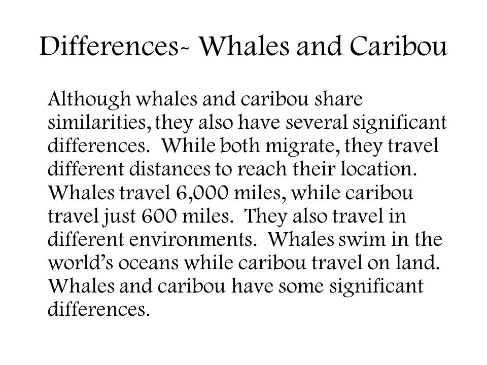 Differences- Whales and Caribou Although whales and caribou share similarities, they also have several significant differences.
