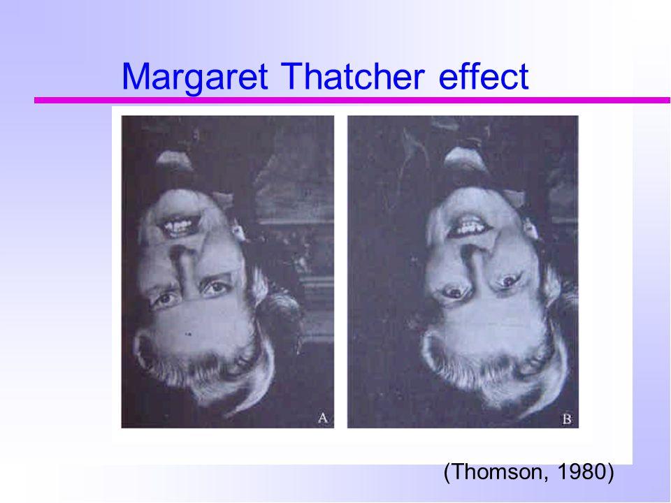 Margaret Thatcher effect (Thomson, 1980)
