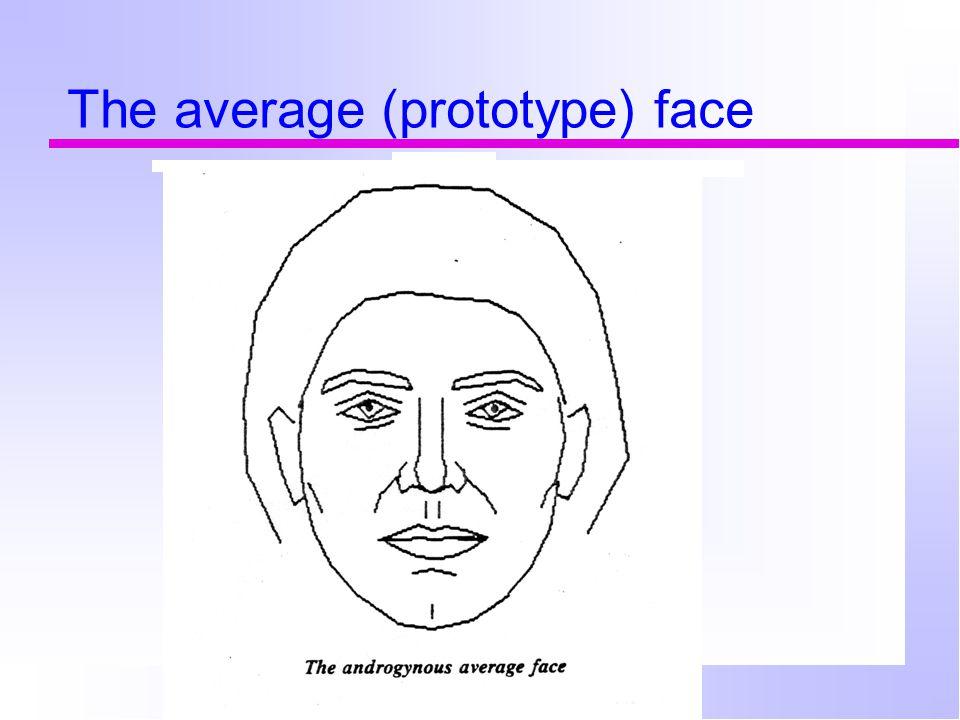 The average (prototype) face