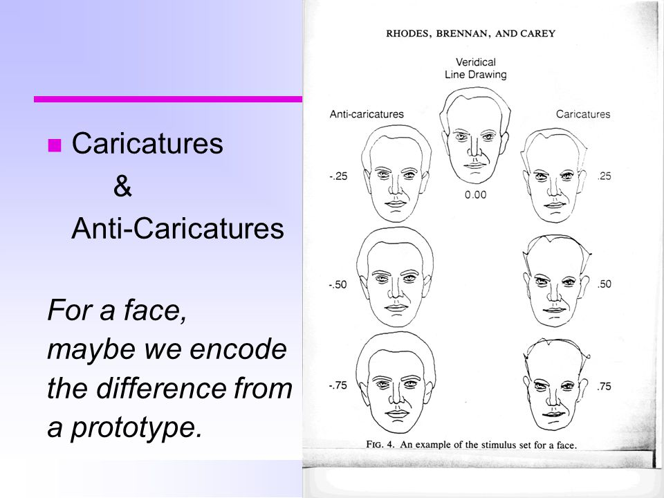 Caricatures & Anti-Caricatures For a face, maybe we encode the difference from a prototype.