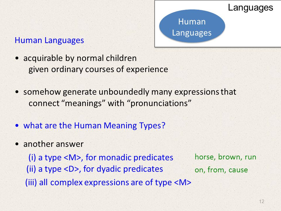 Human Languages acquirable by normal children given ordinary courses of experience somehow generate unboundedly many expressions that connect meanings with pronunciations what are the Human Meaning Types.