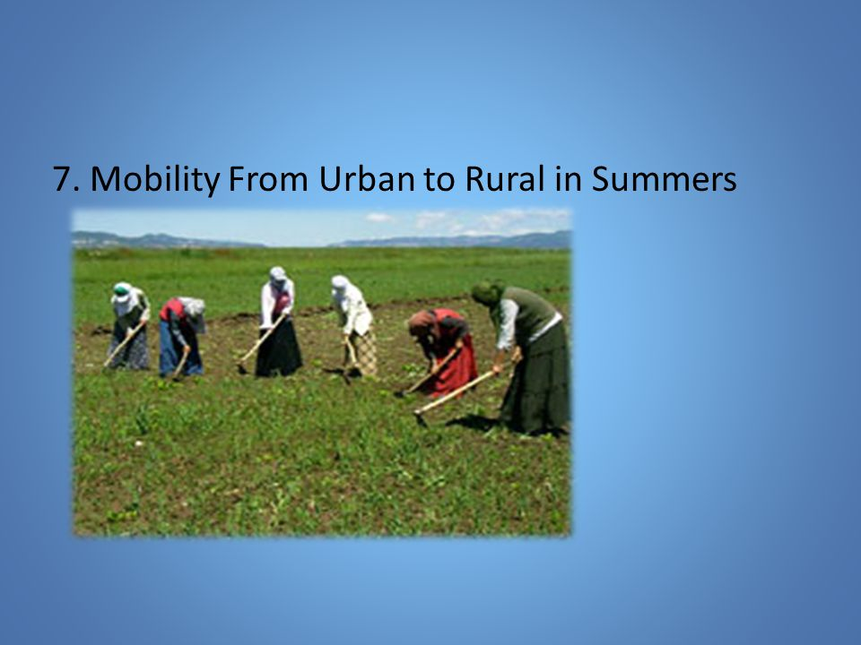 7. Mobility From Urban to Rural in Summers