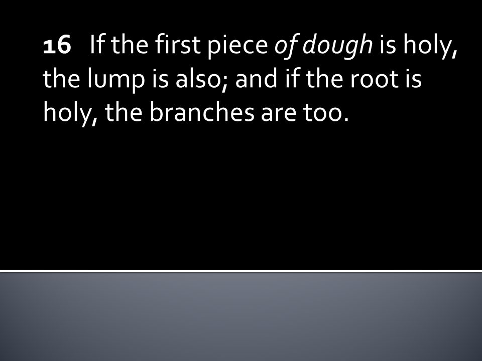 16 If the first piece of dough is holy, the lump is also; and if the root is holy, the branches are too.