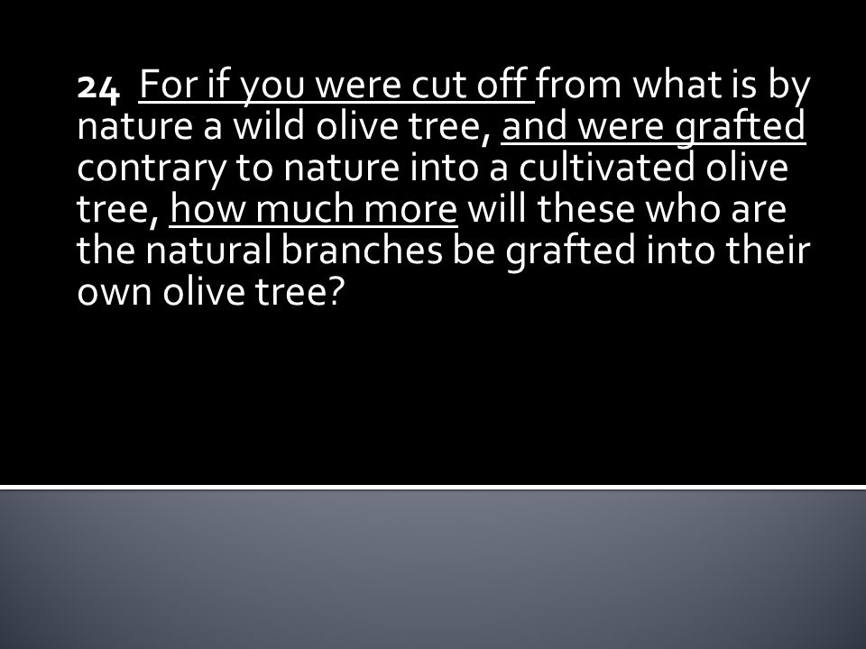 24 For if you were cut off from what is by nature a wild olive tree, and were grafted contrary to nature into a cultivated olive tree, how much more will these who are the natural branches be grafted into their own olive tree?