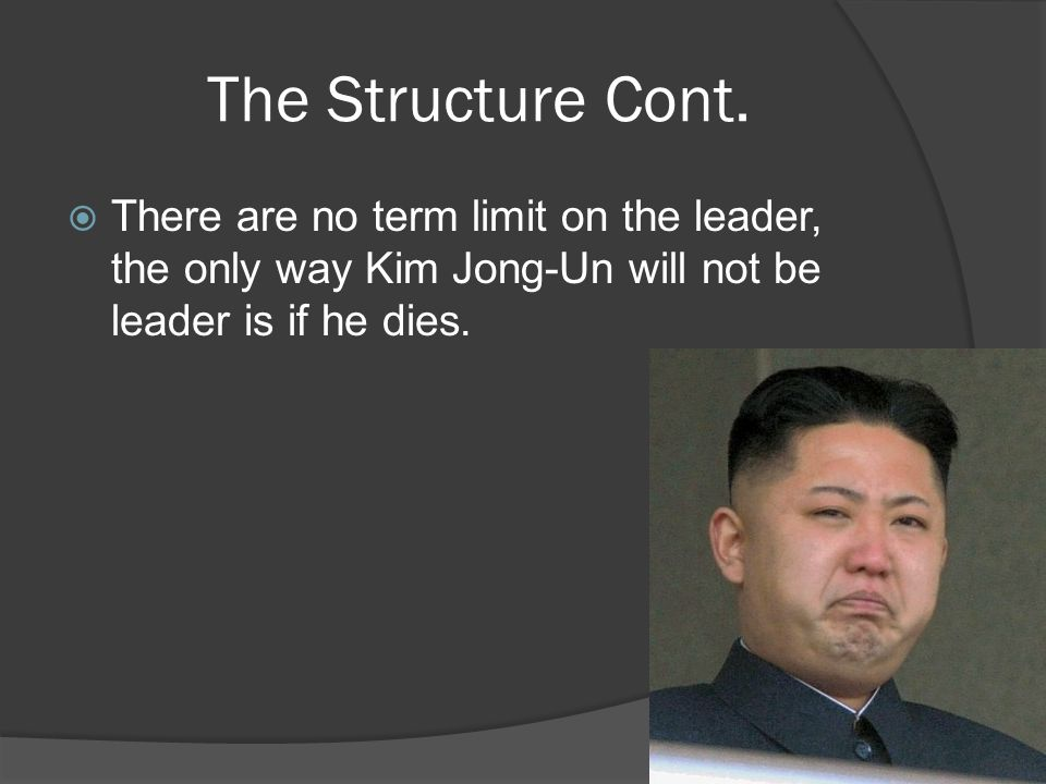 The Structure Cont.  There are no term limit on the leader, the only way Kim Jong-Un will not be leader is if he dies.