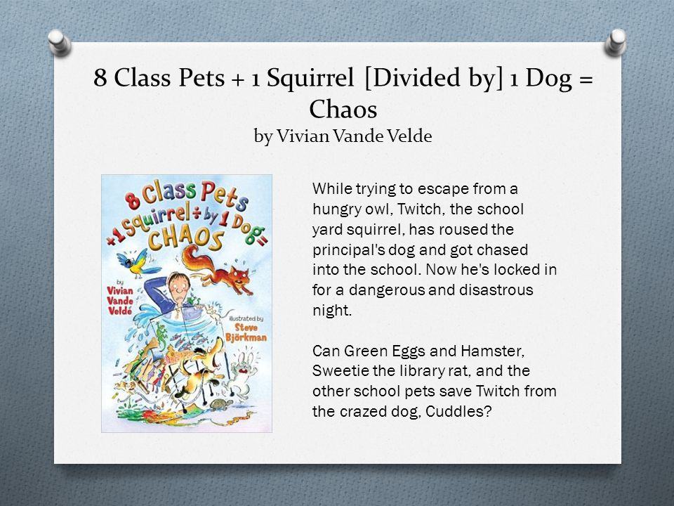 8 Class Pets + 1 Squirrel [Divided by] 1 Dog = Chaos by Vivian Vande Velde While trying to escape from a hungry owl, Twitch, the school yard squirrel, has roused the principal s dog and got chased into the school.