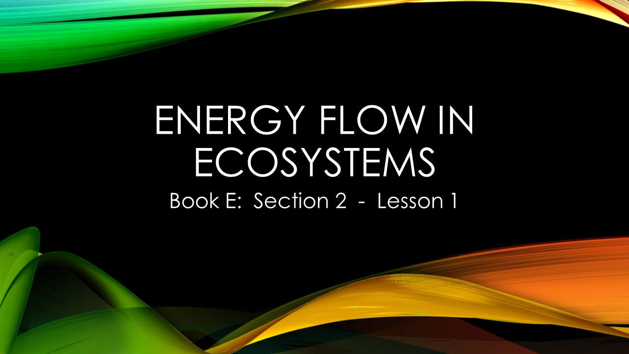 ENERGY FLOW IN ECOSYSTEMS Book E: Section 2 - Lesson 1