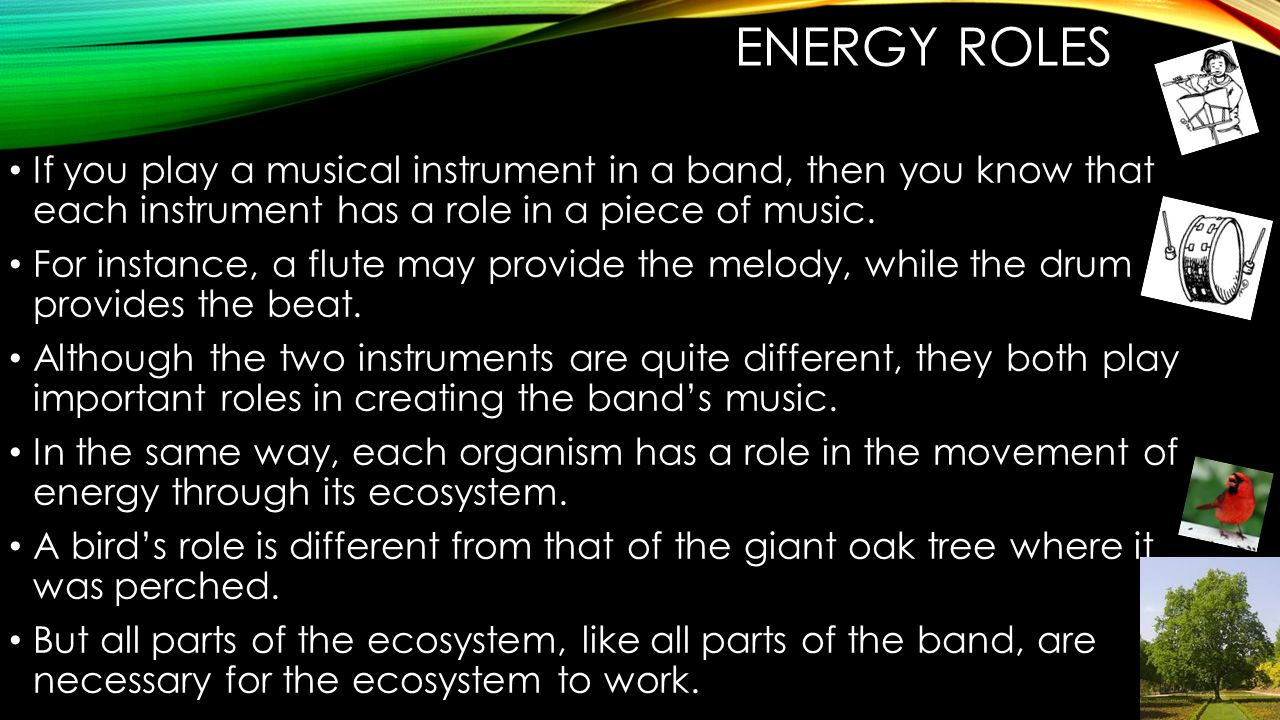 ENERGY ROLES If you play a musical instrument in a band, then you know that each instrument has a role in a piece of music.