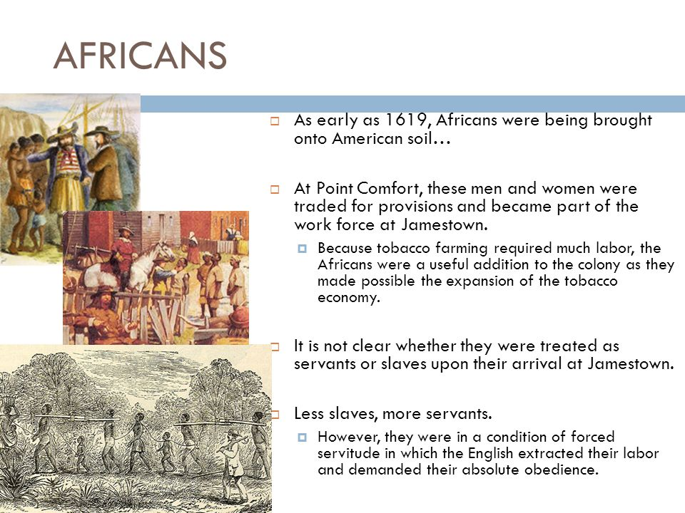 AFRICANS  As early as 1619, Africans were being brought onto American soil…  At Point Comfort, these men and women were traded for provisions and became part of the work force at Jamestown.