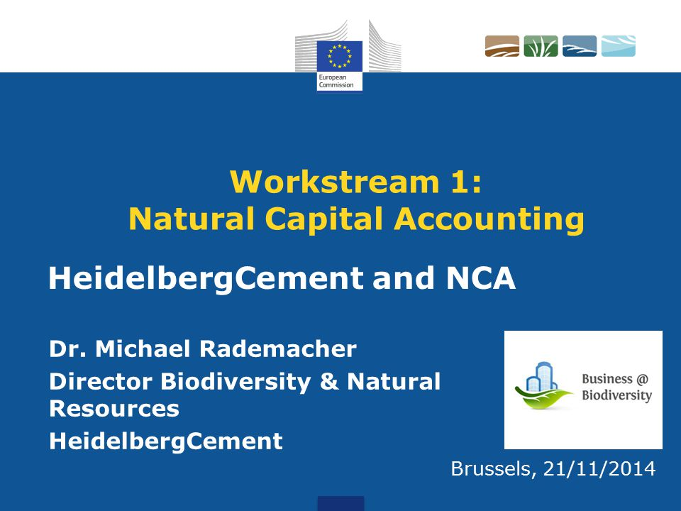 Workstream 1: Natural Capital Accounting Dr.