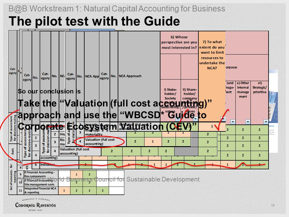 18 The pilot test with the Guide B@B Workstream 1: Natural Capital Accounting for Business So our conclusion is Take the Valuation (full cost accounting) approach and use the WBCSD* Guide to Corporate Ecosystem Valuation (CEV) *WBCSD: World Business Council for Sustainable Development